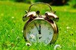 złoty budzik